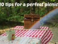 10 tips for a perfect picnic....