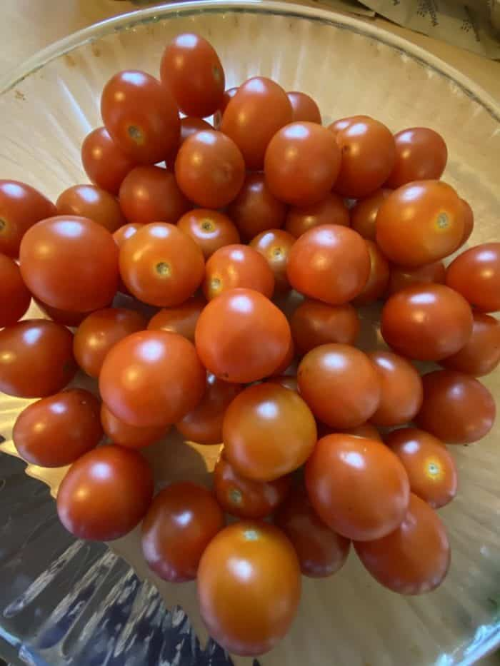 Bargain tomatoes