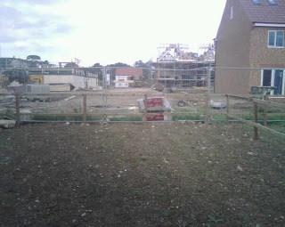Transforming our back garden….