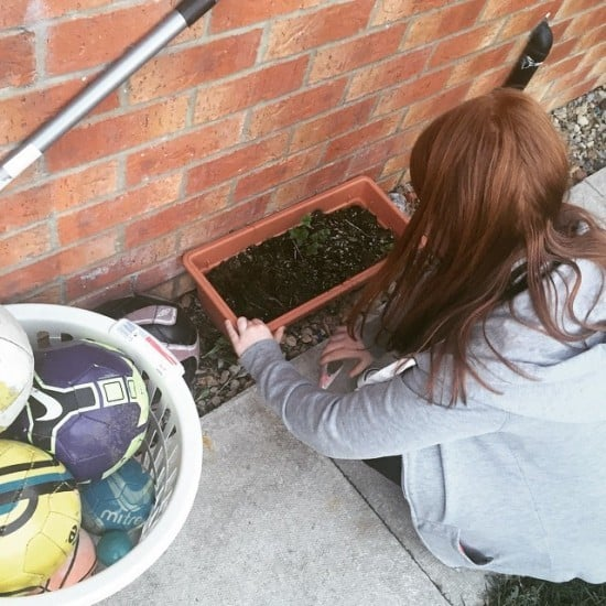 Get out in the garden and  help them grow something.  We have a small herb garden.