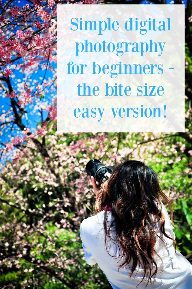 Simple photography for beginners - the bite size easy version....