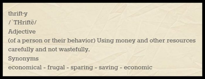 meaning of thrifty