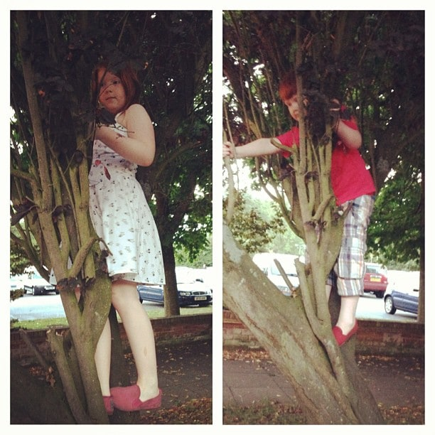 6. This is an addition that the kids made to my list - climbing trees!