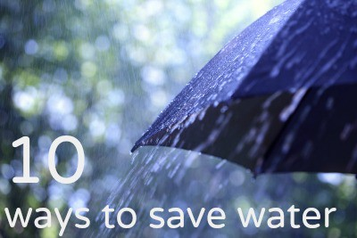 10 ways to save water