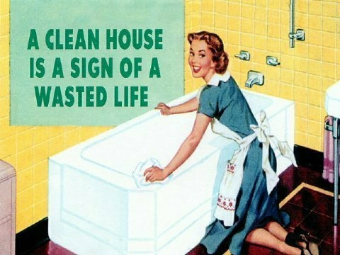 clean house wasted life