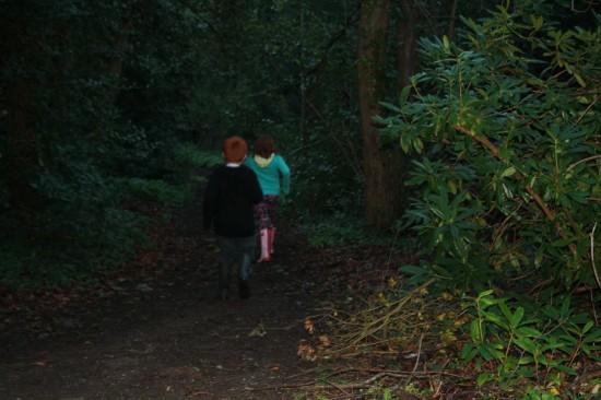 A walk in the woods is spookier in the rain!