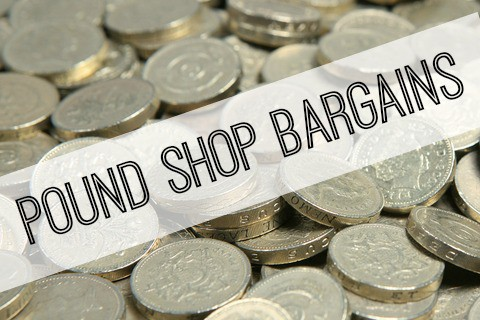 pound shop bargains