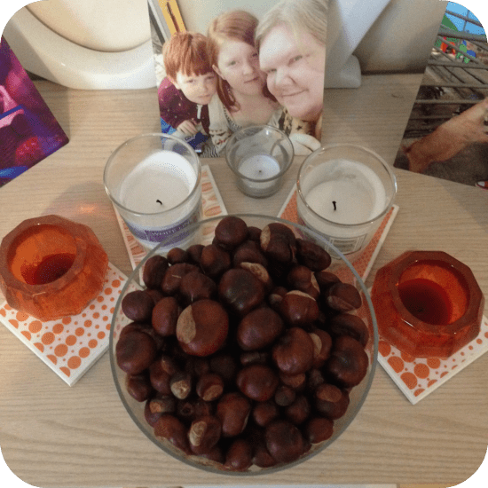what to do with conkers