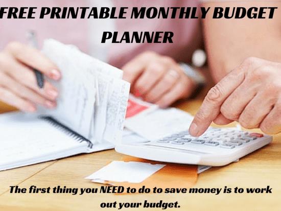 Free Printable Budget Planner (3)