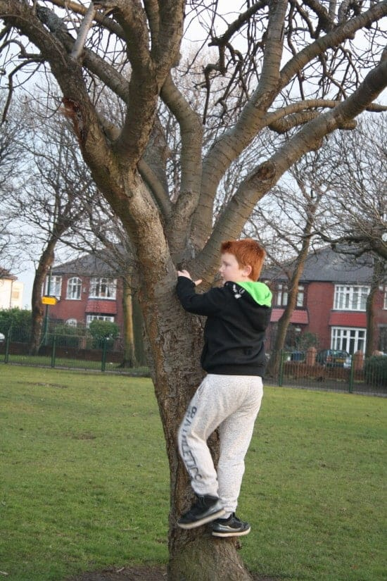 Go to the park - climb a tree, play hide and seek, feed the ducks and have fun!
