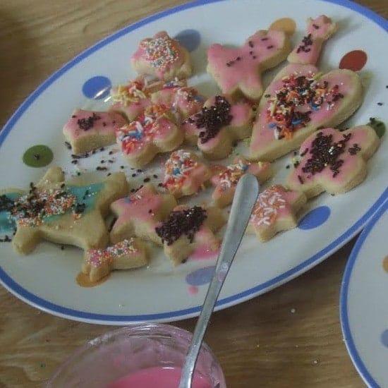2009 biscuits