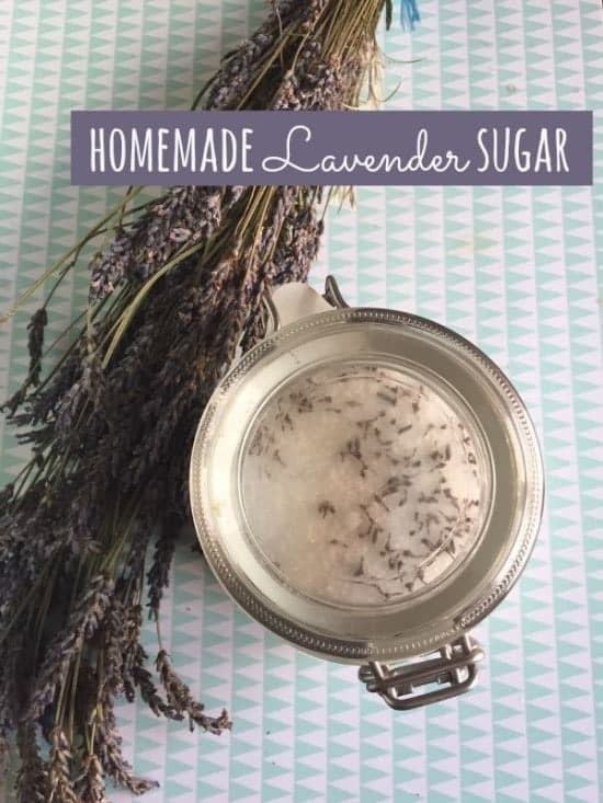 Homemade lavender sugar - perfect for baking