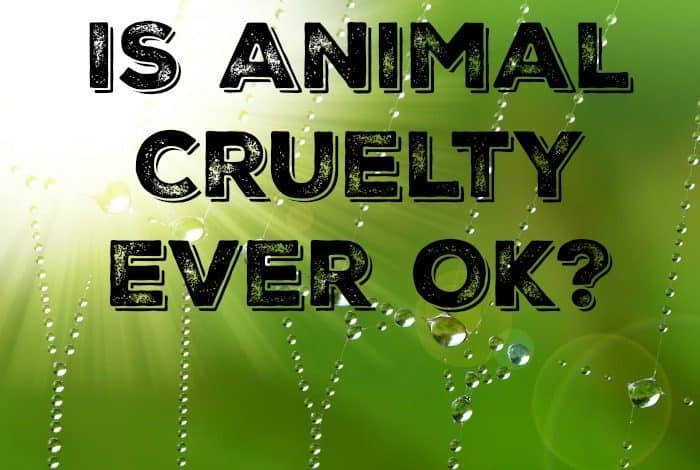IS Animal Cruelty Ever OK