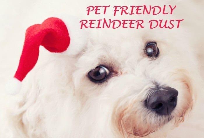 PET FRIENDLY REINDEER DUST