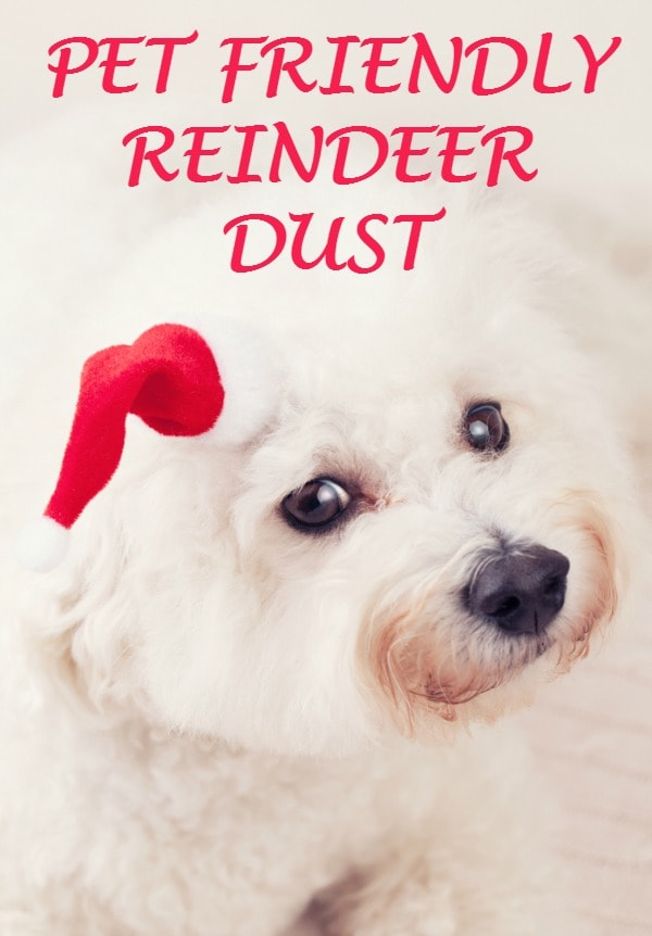 PET FRIENDLY REINDEER DUST