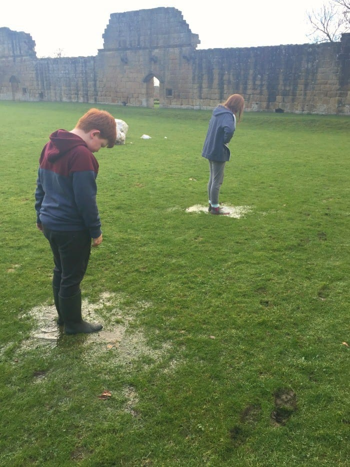 Afternoon at Mount Grace Priory 4