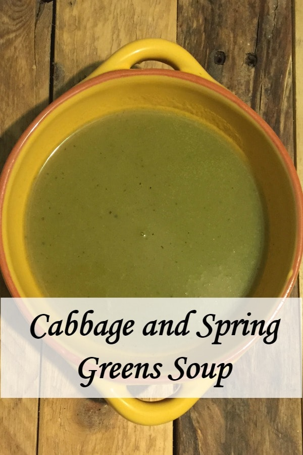 Homemade cabbage and spring greens soup.