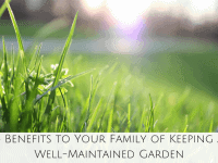 4 Benefits to Your Family of Keeping a Well-Maintained Garden....