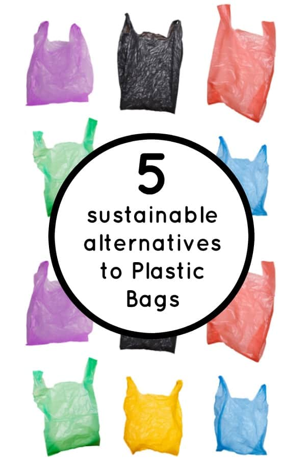 5 sustainable alternatives to Plastic Bags.