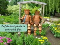 7 of the best plants to grow with kids....
