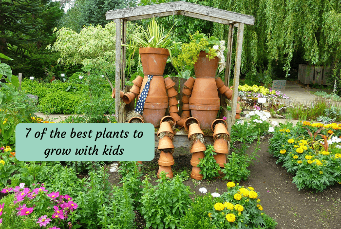 7 of the best plants to grow with kids
