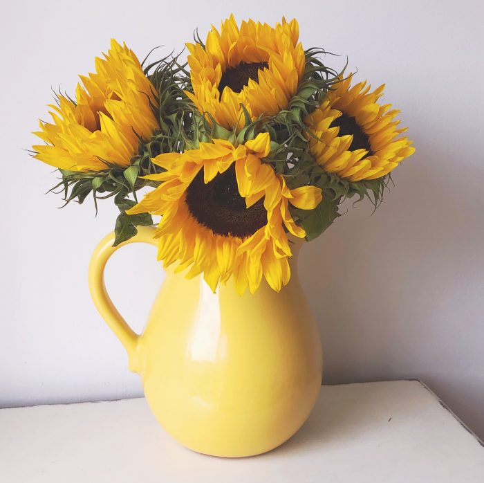 Sunflowers in a yellow jug