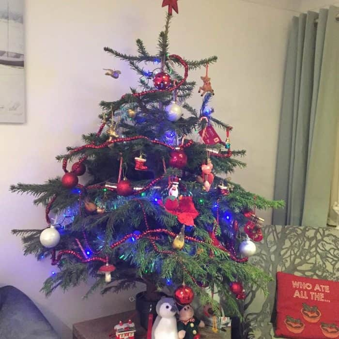 Our real tree