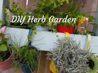 DIY Herb Garden....