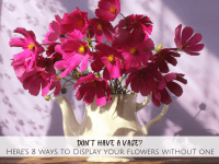 Don't have a Vase? Here's 8 ways to display your flowers without a Vase....