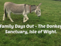 Family Days Out - The Donkey Sanctuary, Isle of Wight....