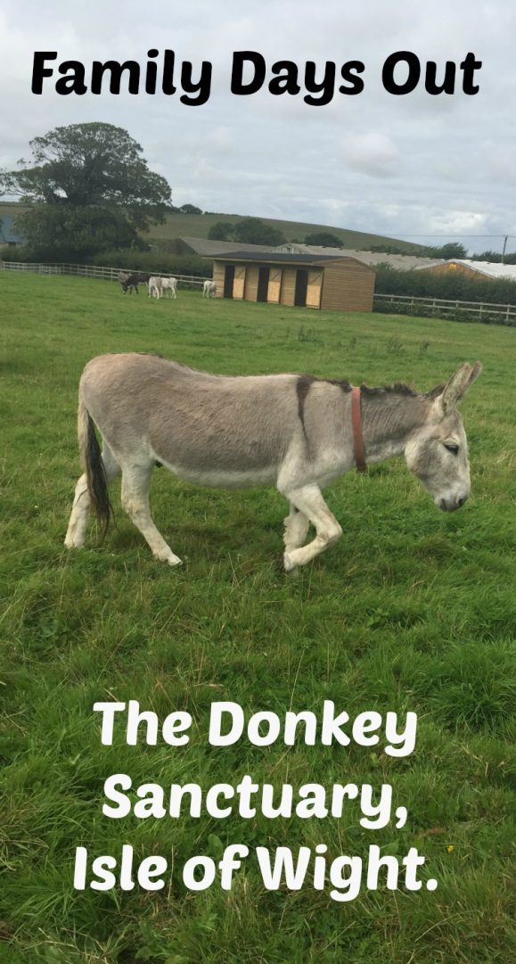 Family Days Out - The Donkey Sanctuary, Isle of Wight....  A great time for kids and grown ups and best of all it's completely free!