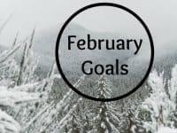 My February Goals....
