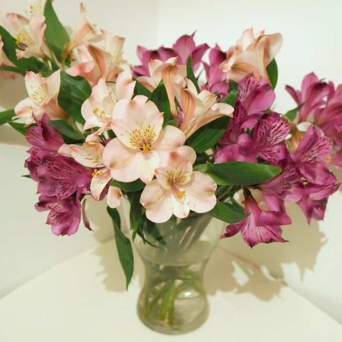 Bargain flowers.... again