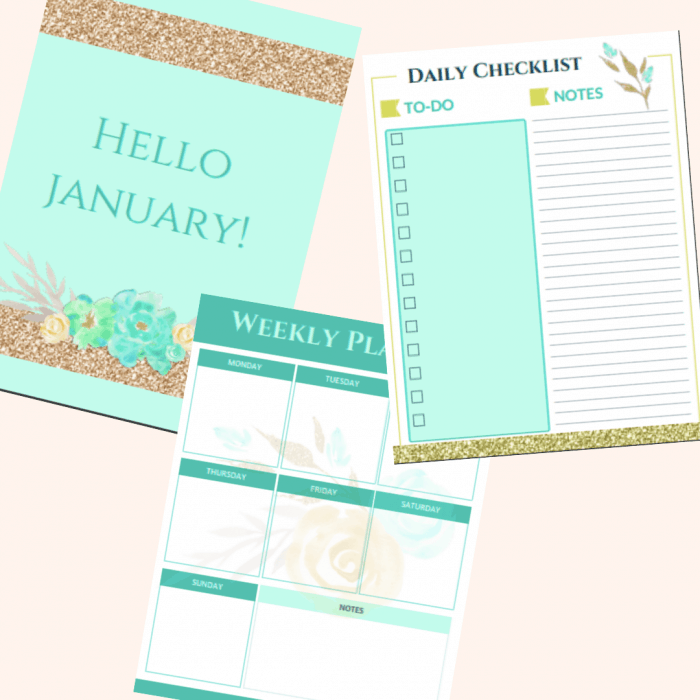 image about Printable Life Planner named Choose Organised with a Daily life Planner. Totally free Planner