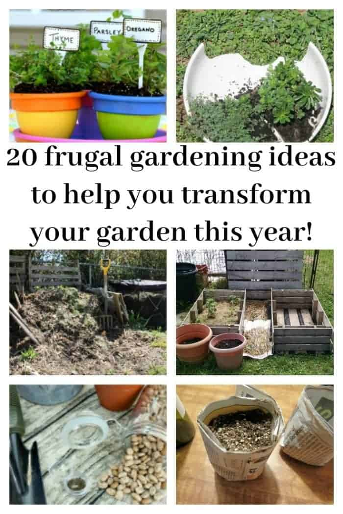 20 frugal gardening ideas to help you transform your garden this year!