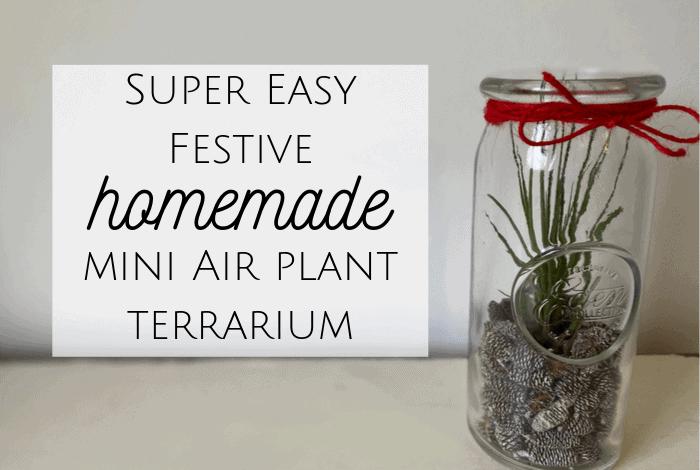 Homemade Air Plant Terrarium!