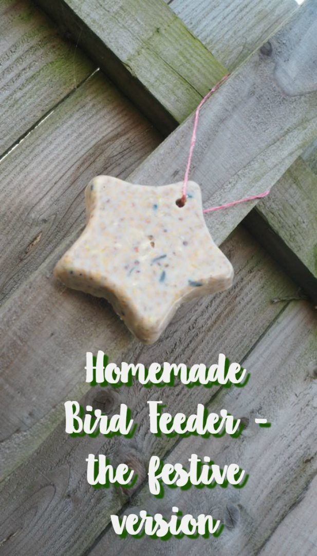 Homemade Bird Feeder - the festive version