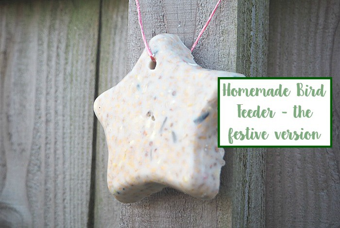 Homemade Bird Feeder - the festive version