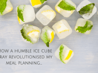 How an ice cube tray revolutionised my meal planning....