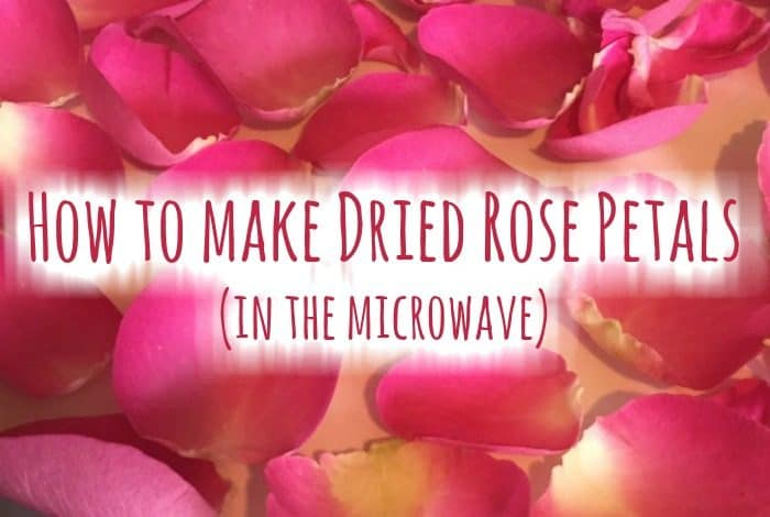 How to dry rose petals.
