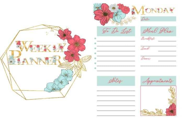 picture regarding Free Weekly Planner identified as How towards Organise Your 7 days with this No cost printable weekly