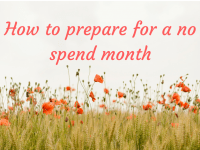 How to prepare for a No Spend Month....