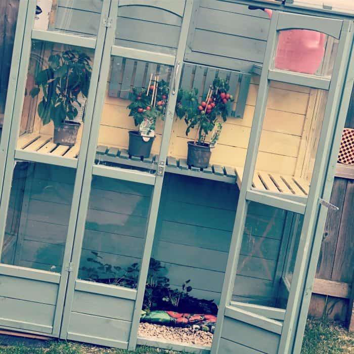 New Greenhouse