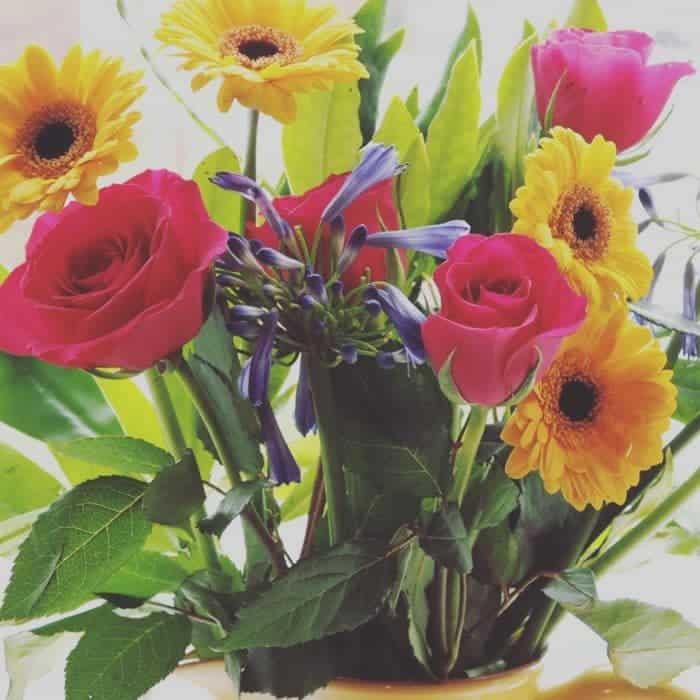 Gorgeous fresh flowers
