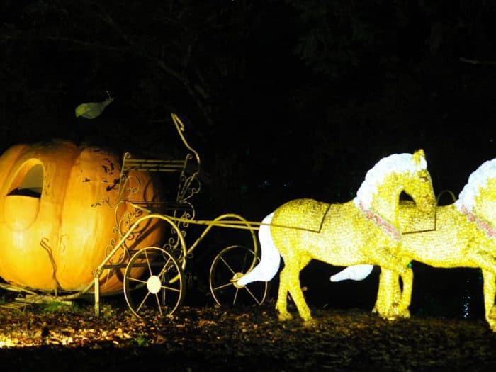 The Enchanted forest at Stockeld Park Christmas Adventure
