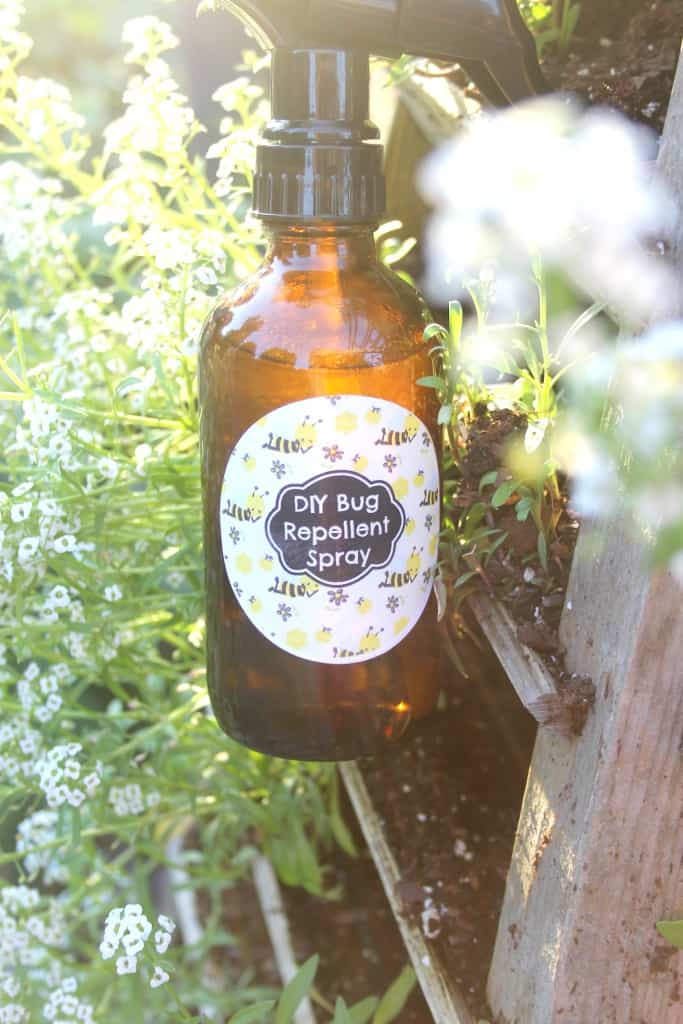 This DIY Essential Oils Bug Spray is just what you need to keep the bugs away this Summer without the harsh chemicals of the shop bought bug repellents!