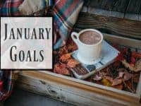 My January Goals....