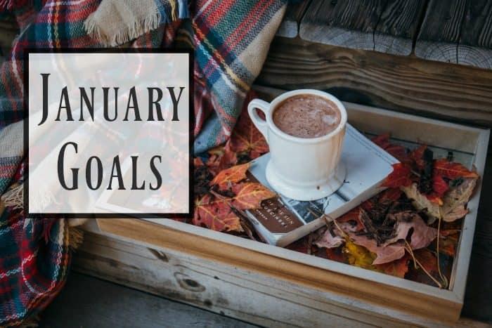 My January Goals….
