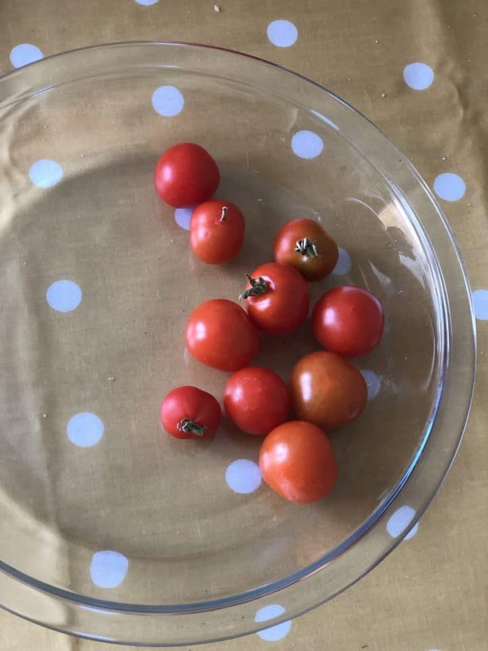 Cherry tomatoes from my garage.