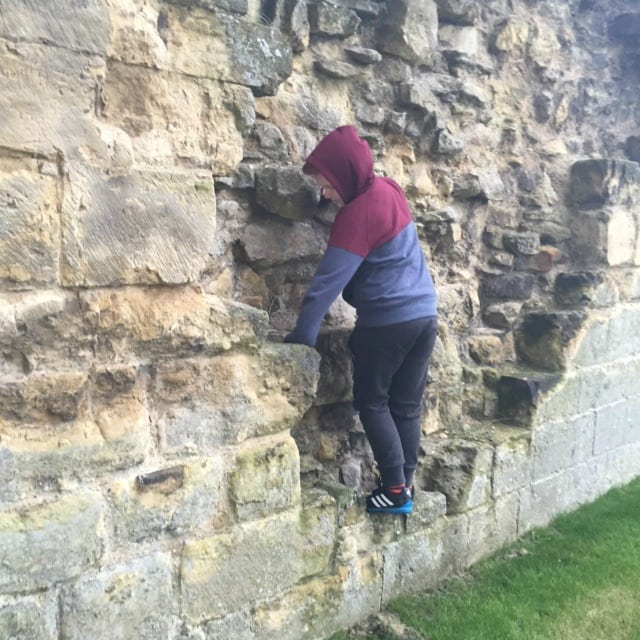 Last Sunday for Mothers Day we went out for a couple of hours at Byland abbey instead of having an expensive lunch!